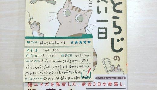 猫と暮らすすべての人に。心の底から読んでほしいです。「猫のとらじの長い一日:今川はとこ」の感想