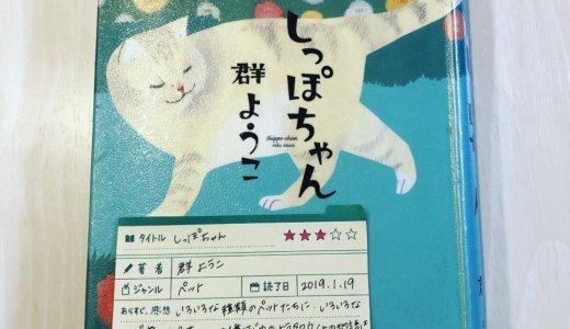 動物を愛する全ての人が和み、癒される物語。動物好きはぜひ一度読んで!「しっぽちゃん:群ようこ」の感想