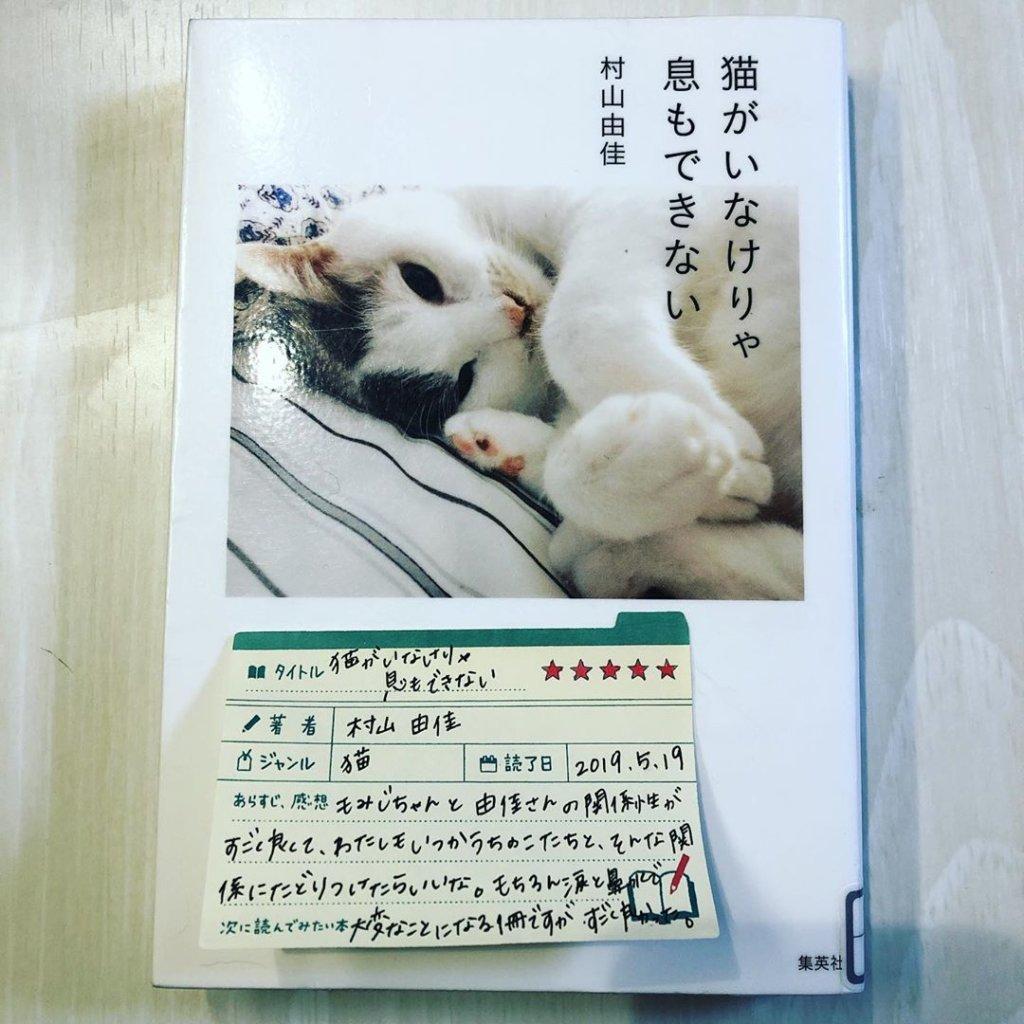 猫がいなけりゃ息もできない 村山由佳 読書 感想 書評 レビュー